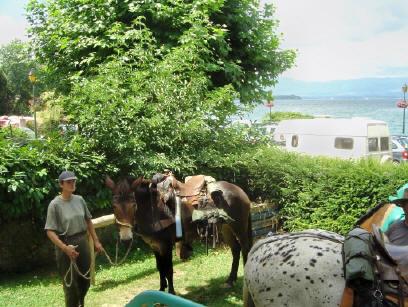 BS4: A la découverte de la Haute Savoie (La Hiaute 1) 013_13