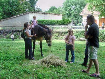 BS4: A la découverte de la Haute Savoie (La Hiaute 1) 016_16