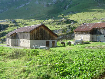 BS4: A la découverte de la Haute Savoie (La Hiaute 1) 038_38