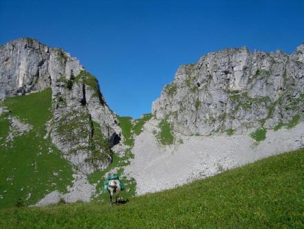 BS4: A la découverte de la Haute Savoie (La Hiaute 1) 058_58