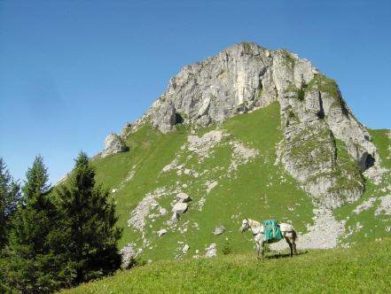 BS4: A la découverte de la Haute Savoie (La Hiaute 1) 059_59