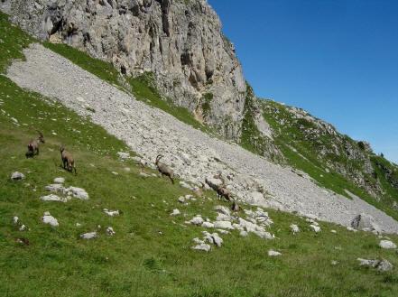 BS4: A la découverte de la Haute Savoie (La Hiaute 1) 063_63