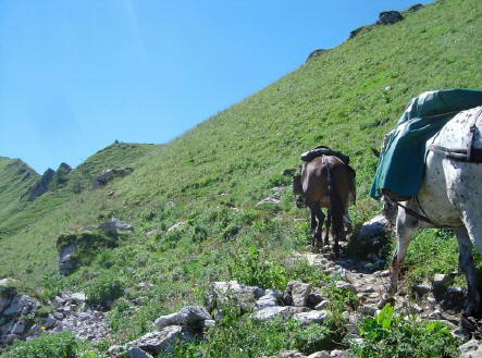 BS4: A la découverte de la Haute Savoie (La Hiaute 1) 069_69
