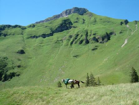 BS4: A la découverte de la Haute Savoie (La Hiaute 1) 072_72