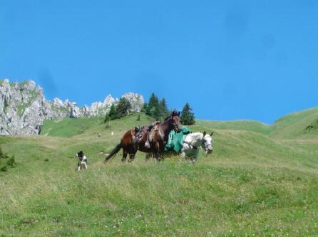 BS4: A la découverte de la Haute Savoie (La Hiaute 1) 074_74
