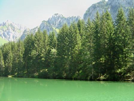 BS4: A la découverte de la Haute Savoie (La Hiaute 1) 075_75