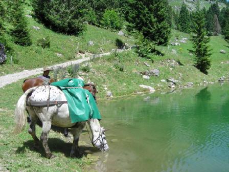 BS4: A la découverte de la Haute Savoie (La Hiaute 1) 076_76